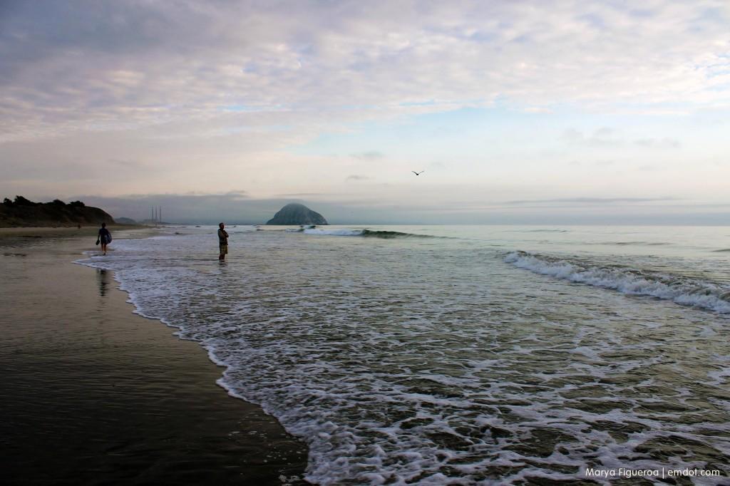 Morro Bay Dog Beach