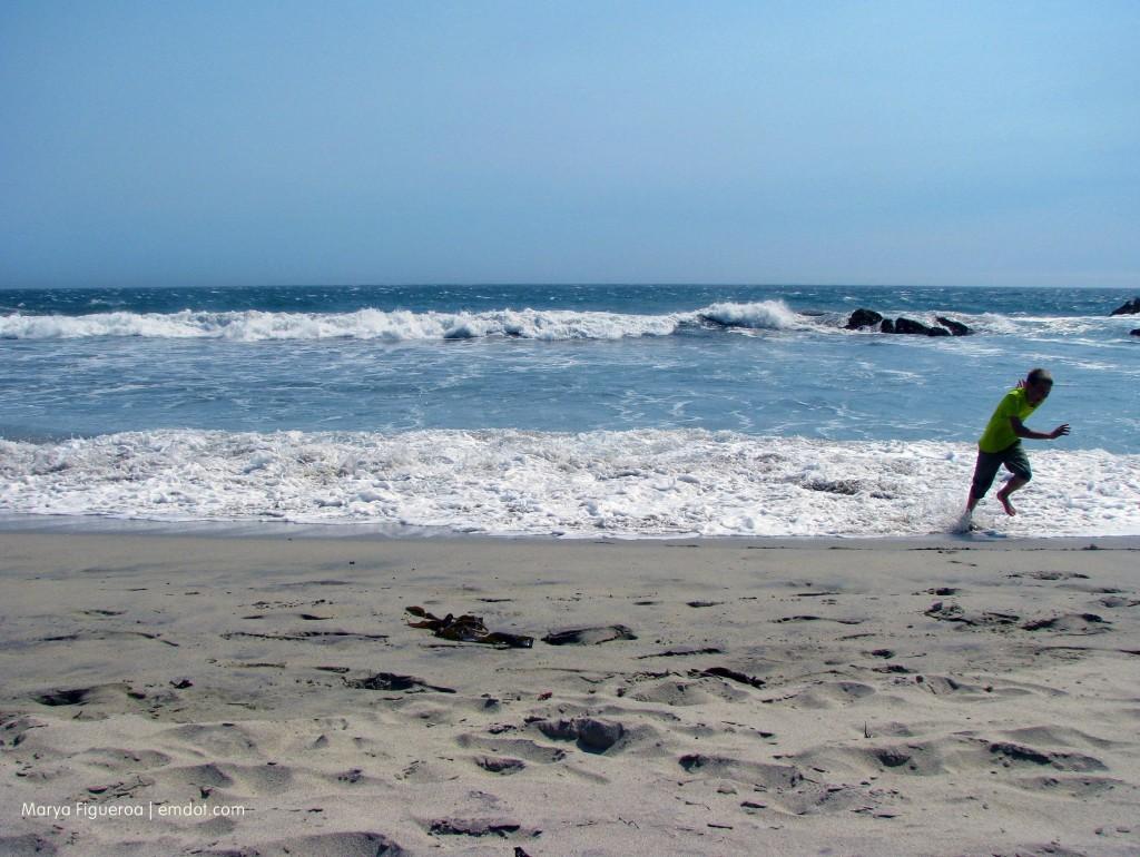 Pfeiffer Beach running from waves