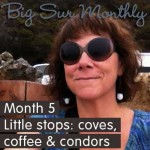 Big Sur Month 5