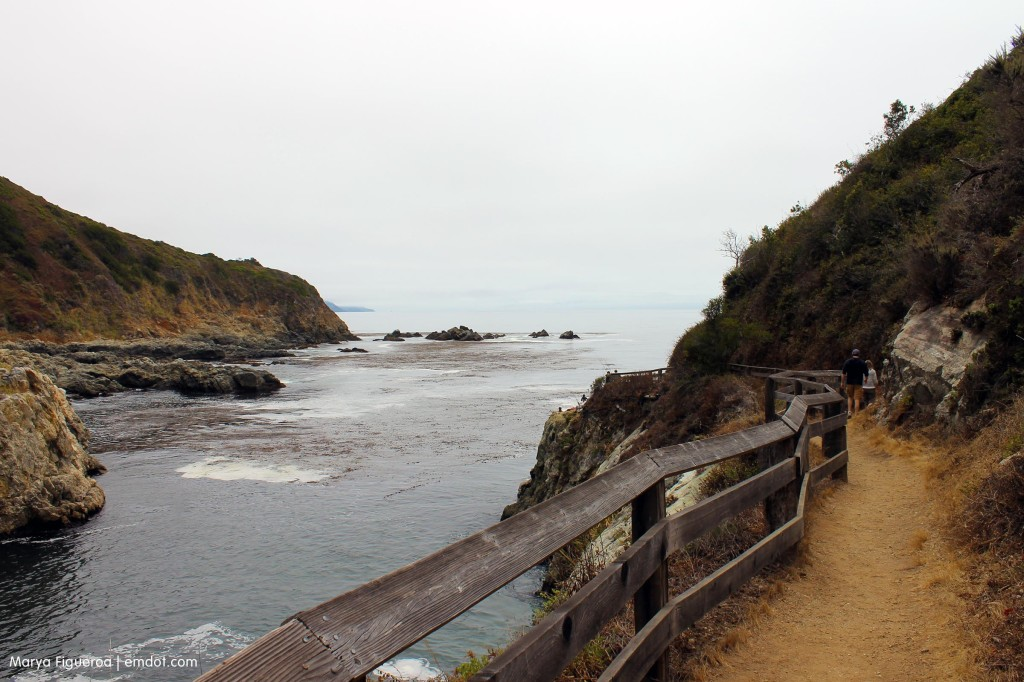 Trail to the end of the cove