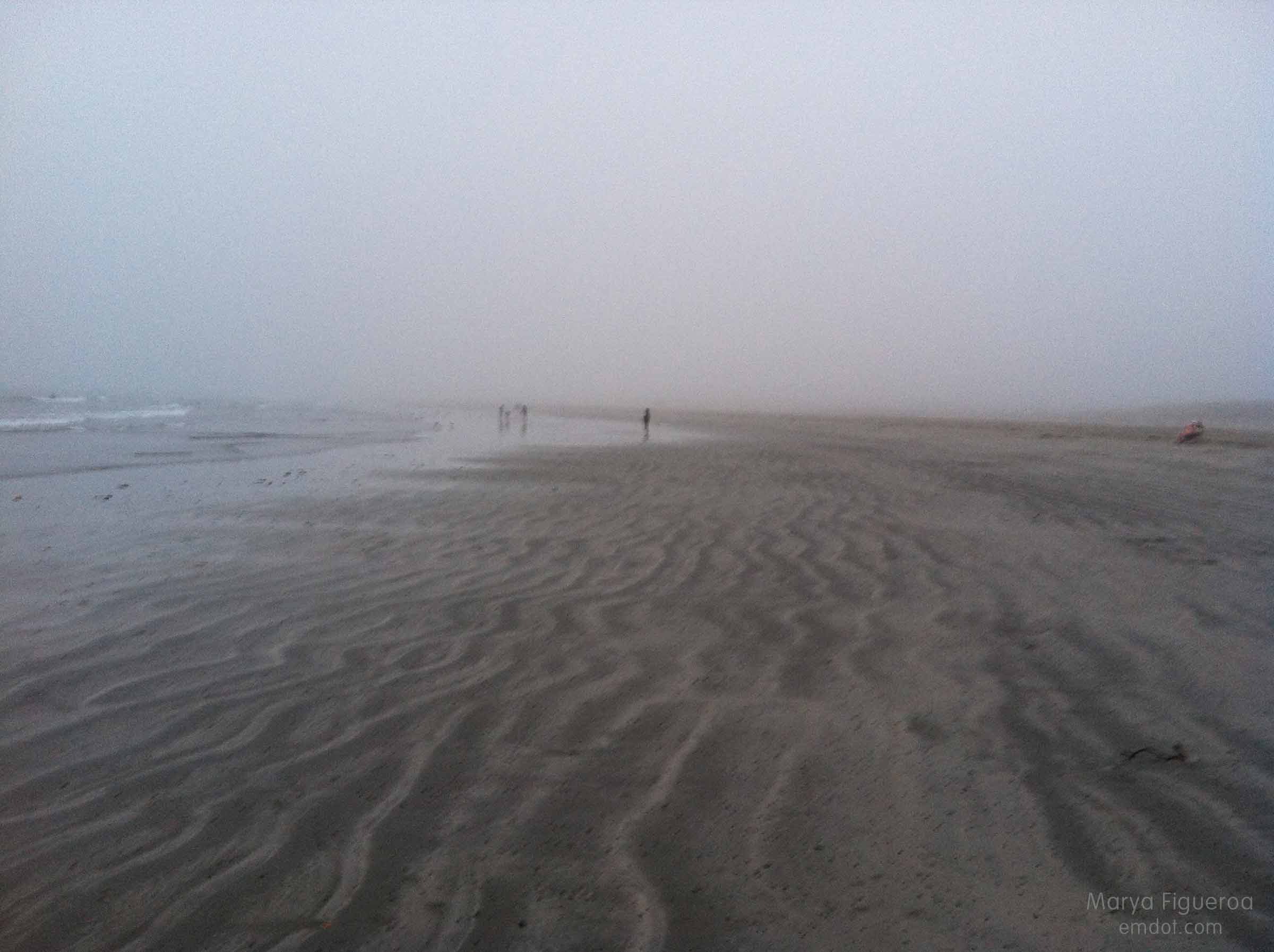 foggy beach at morro rock