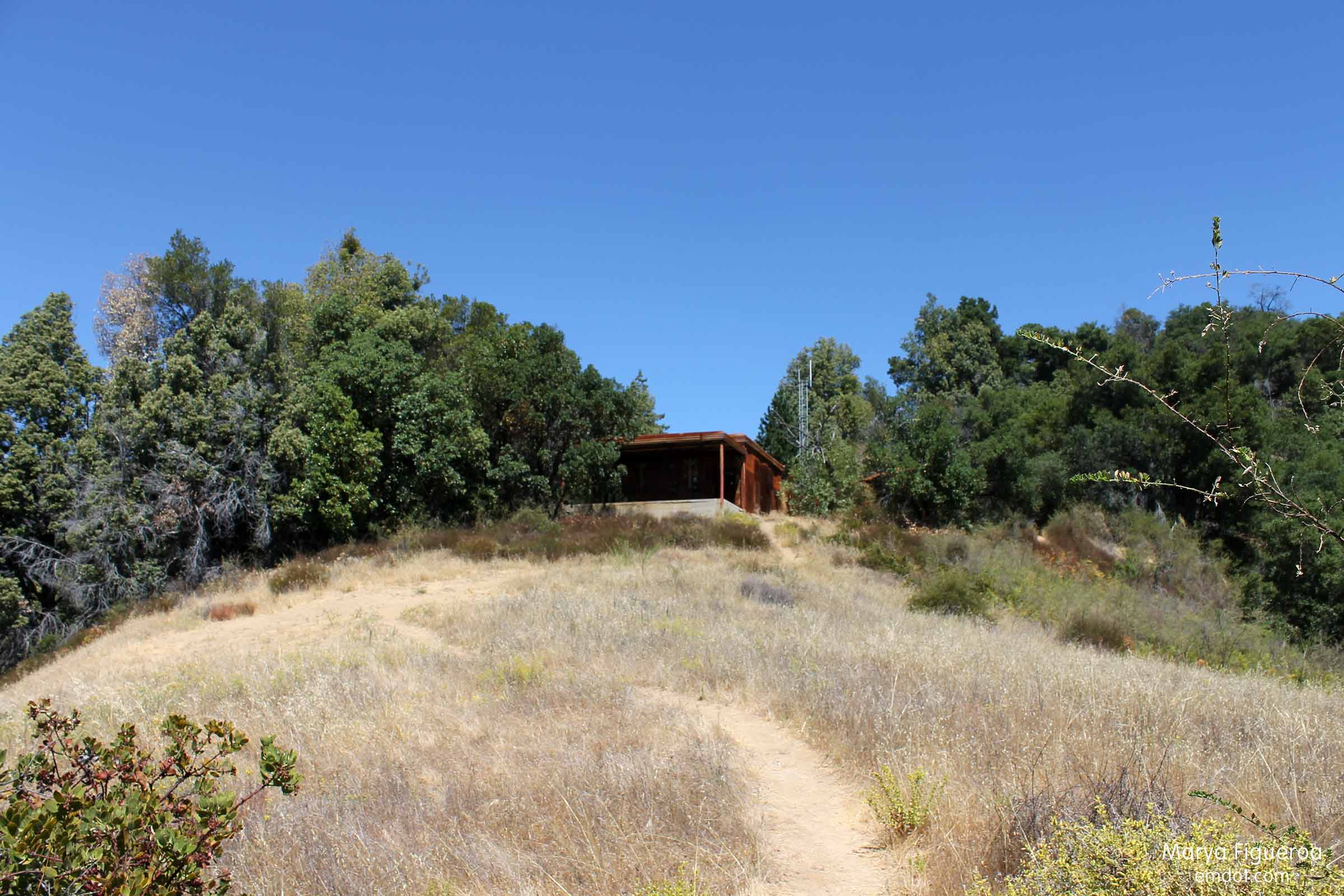 tin house on the hill