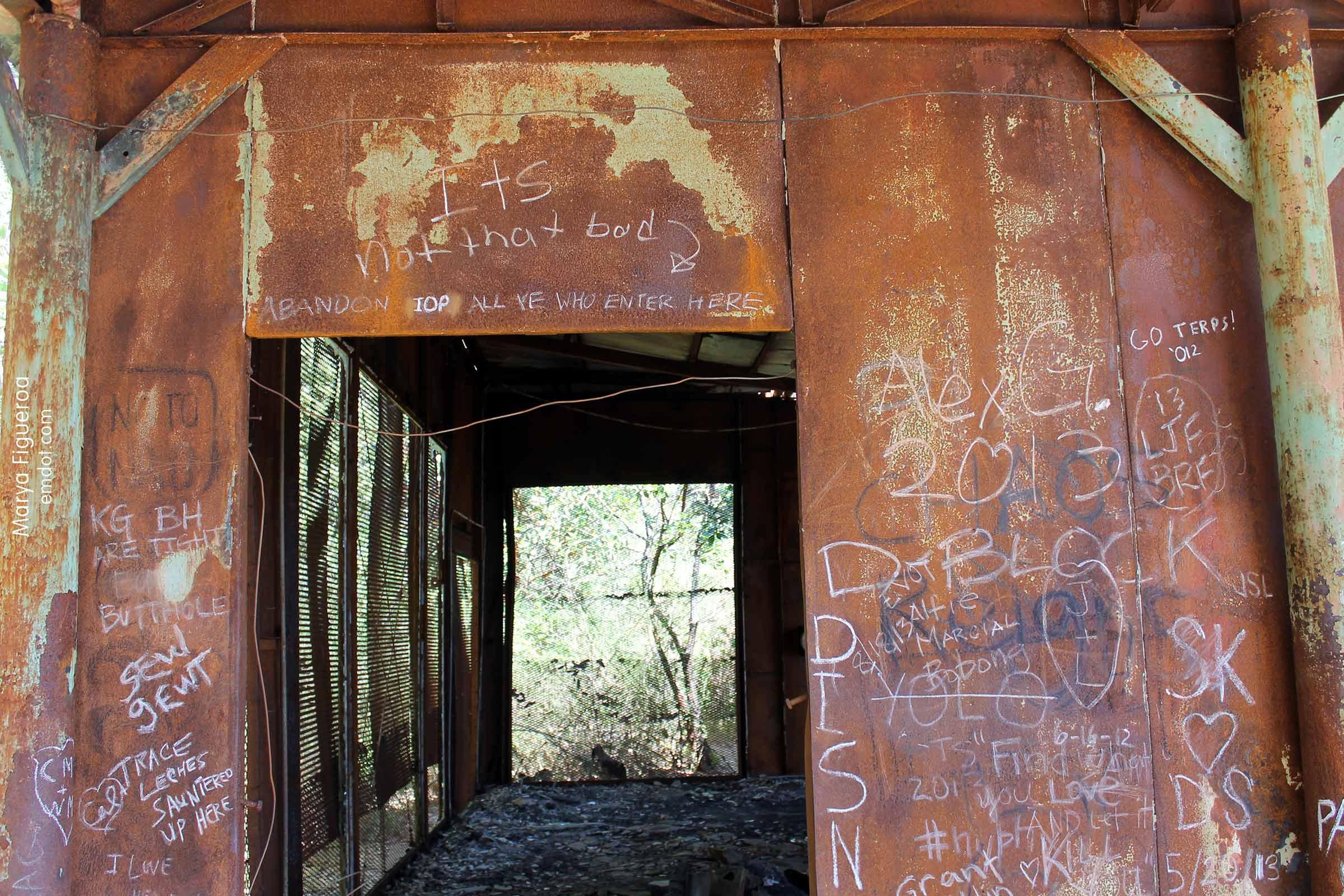 dante graffiti