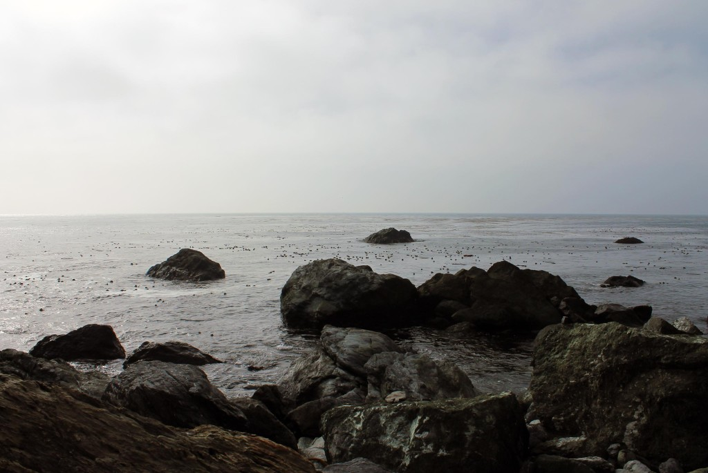 rocks out to sea