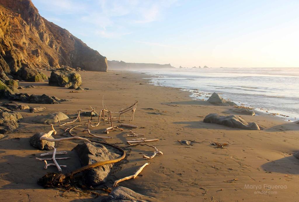 beach creation