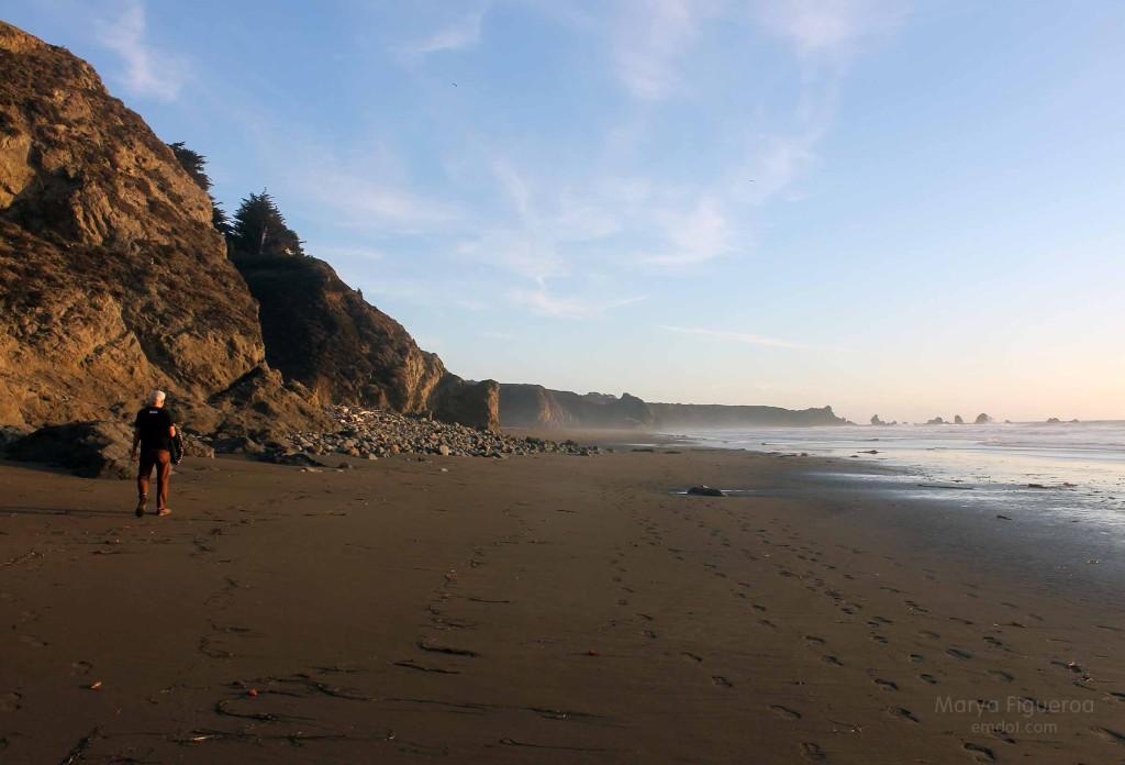 beach, looking south again